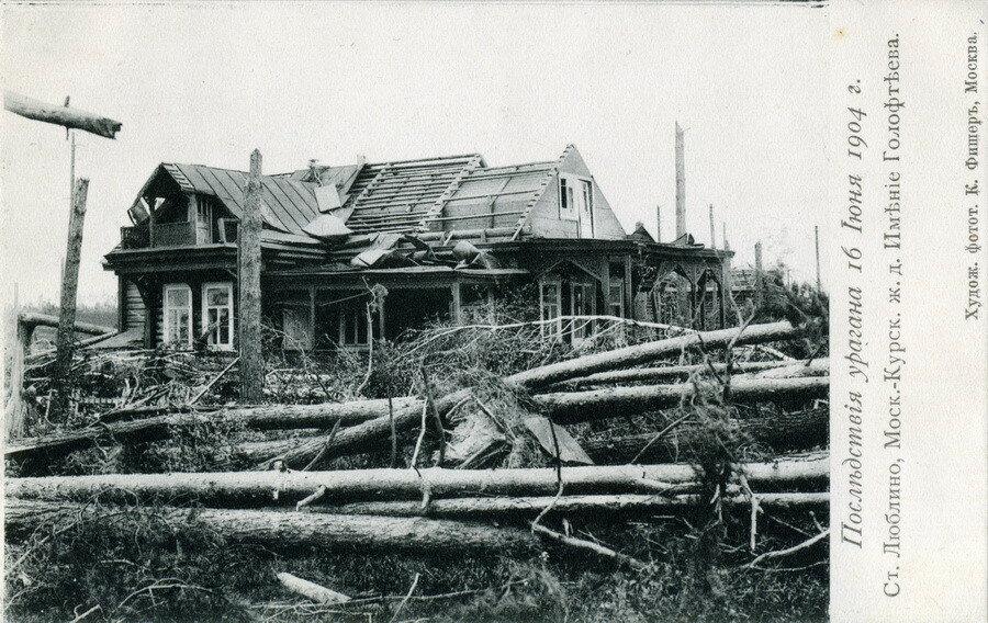 11873 Имение Голофтеева. Последствия урагана К. Фишер.jpg