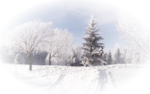 Winter Backgrounds #1 (127).png