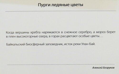 https://img-fotki.yandex.ru/get/166616/140132613.532/0_214891_847608b6_L.jpg