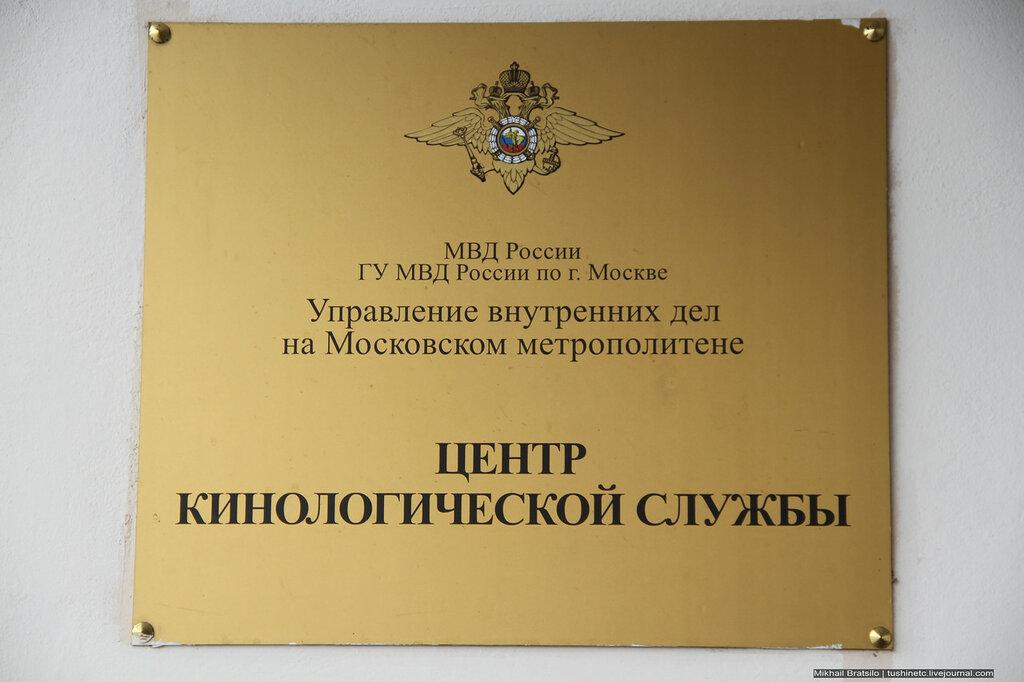 IMG_0784.JPG