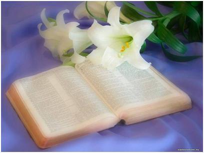 День библиотек! Книга, белые лилии
