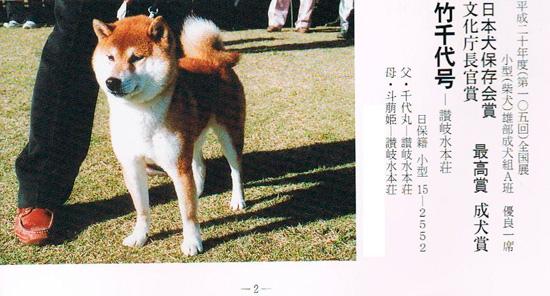 Ичибан 105-й ГН 2008 (2).jpg