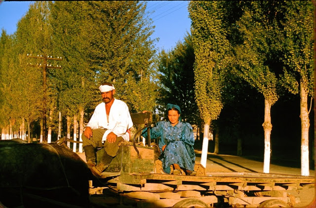 Теплые и красочные снимки повседневной жизни Узбекистана в 1956 году