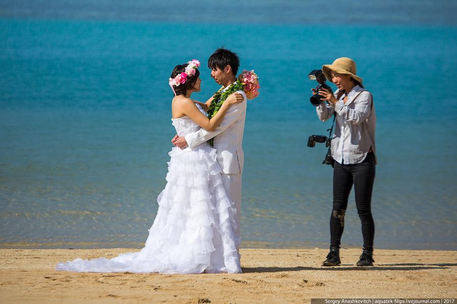 5. На Гавайях очень мало красивых девушек и очень мало стройных девушек. Для меня это стало сам