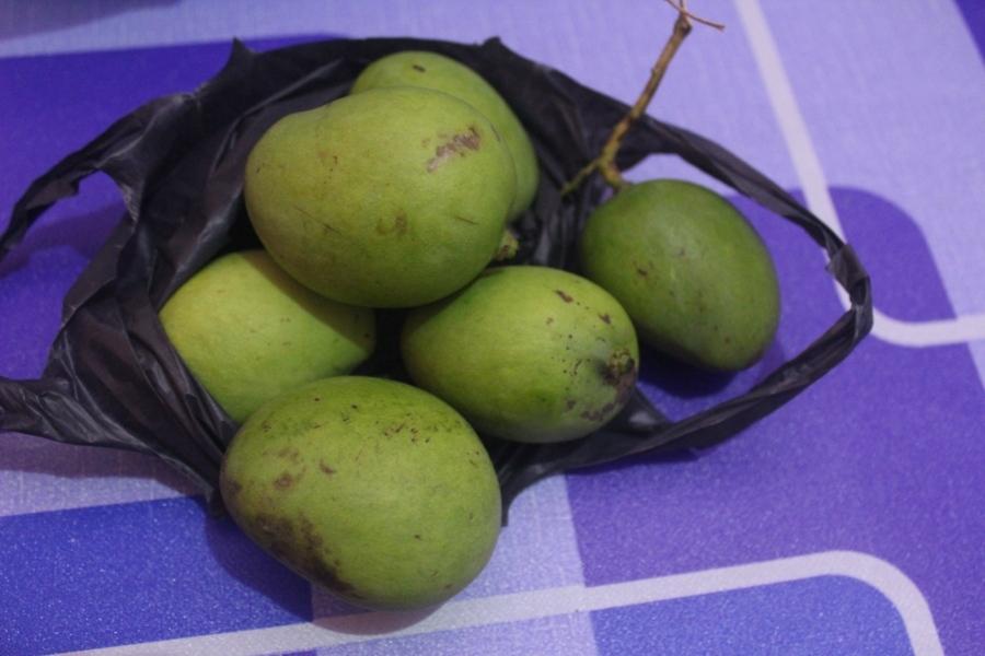 Манго бывают разные — красные, желтые, зеленые. Это — зеленое и маленькое, у него даже к