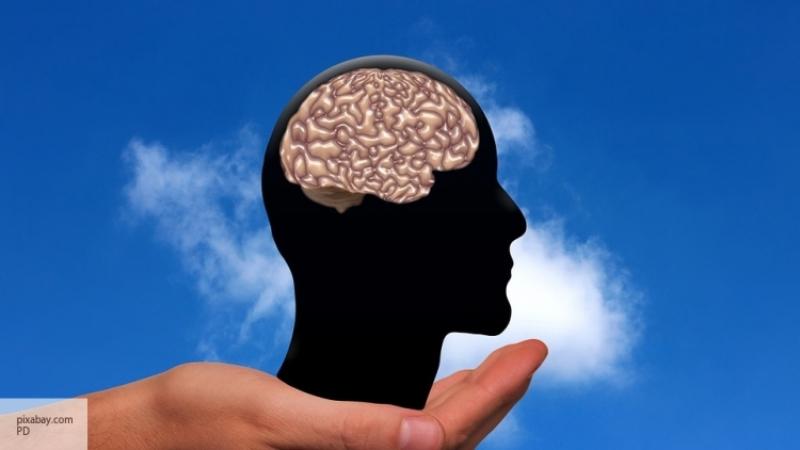 Вражда полов: ученые поведали, почему женский мозг стареет медленнее мужского