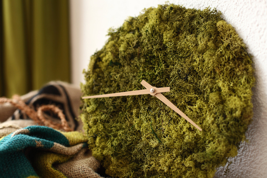 Stylish Clock and Ceiling Lights Covered with Icelandic Moss (8 pics)