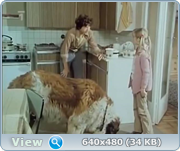 http//img-fotki.yandex.ru/get/166616/40980658.19a/0_14dfa9_dd2b1537_orig.png