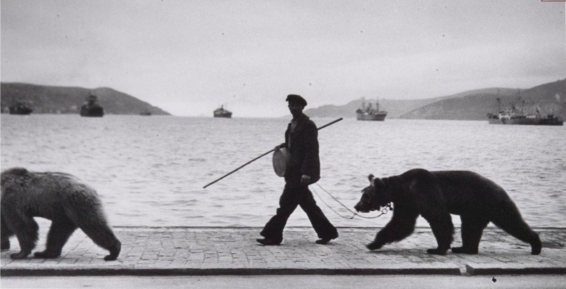 1953. Дрессированные медведи с укротителем переходят Босфор по мосту