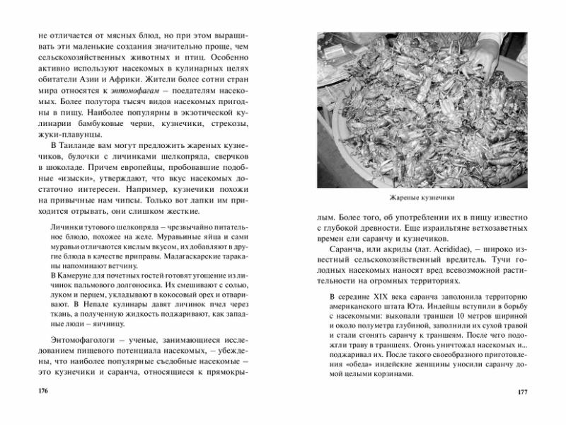 1215_Ud-nasekomye_224_RL-page-089.jpg