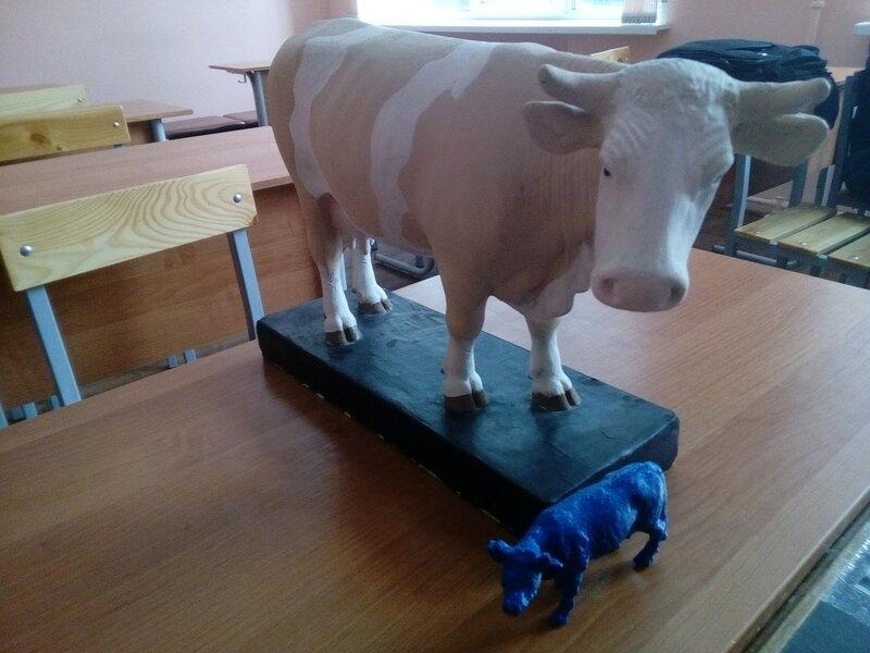 Коровы-05.jpg