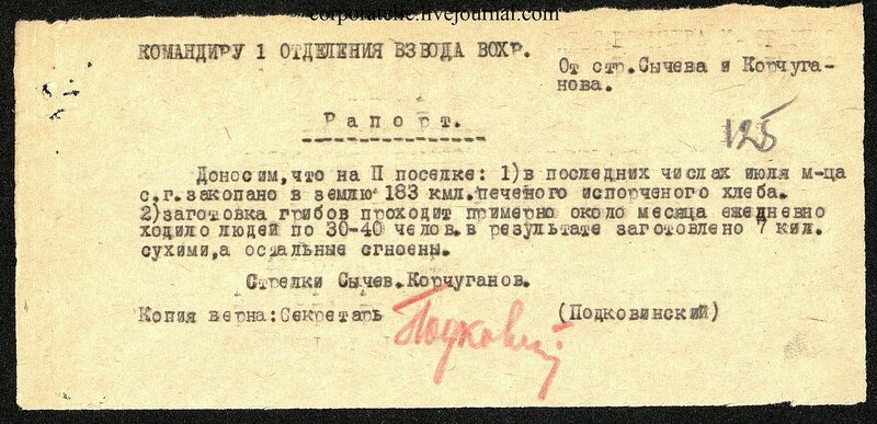 П-7, оп.1, д.628, 144.jpg