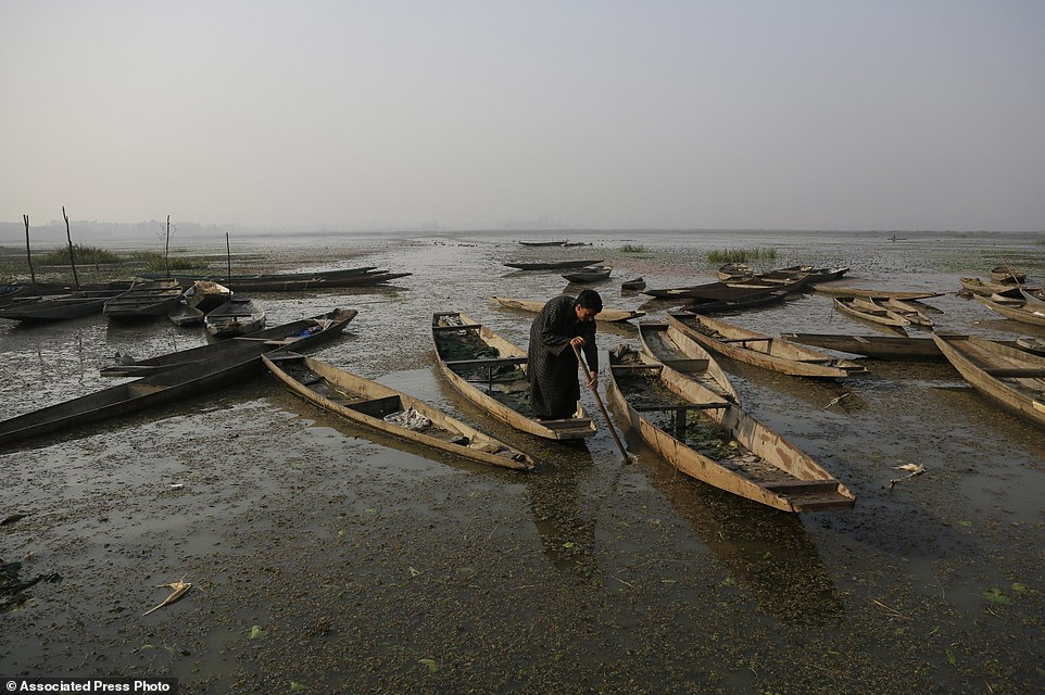 Одно из крупнейших пресноводных озер Азии превратилось в вонючее болото