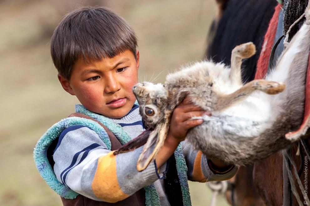 Транспорт юного пастуха: