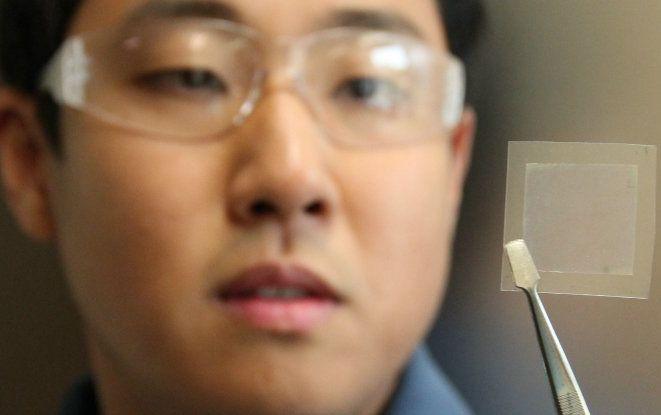 ВАвстралии отыскали способ производства графена изсоевого масла