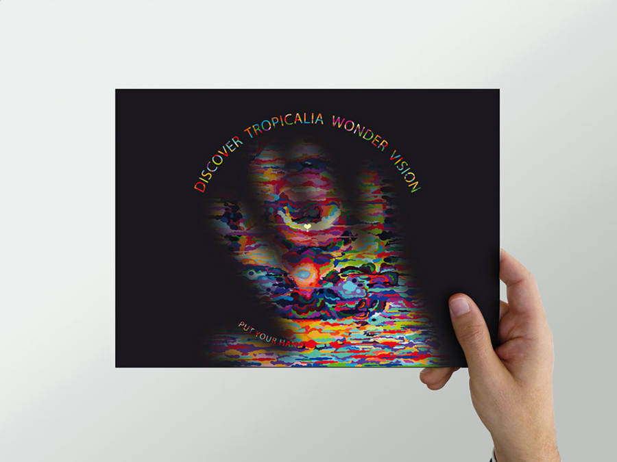 Tropicalia Wonder Vision Thermographic Flyer (6 pics)