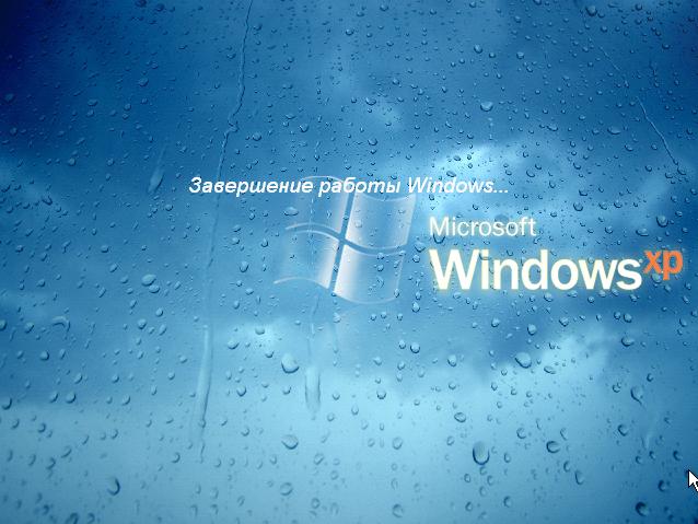 windows xp zver скачать торрент cd