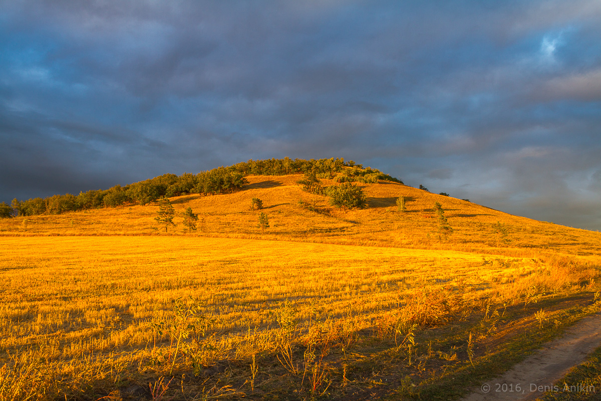 Золотая гора фото 1