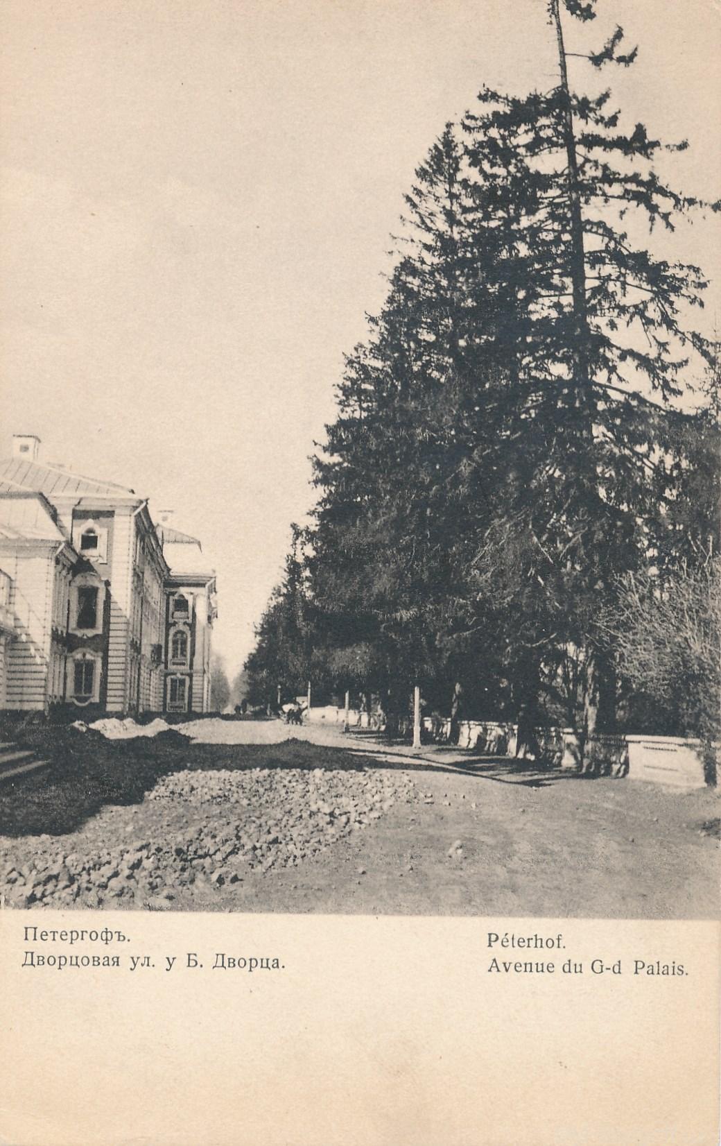 Дворцовая улица у Большого дворца