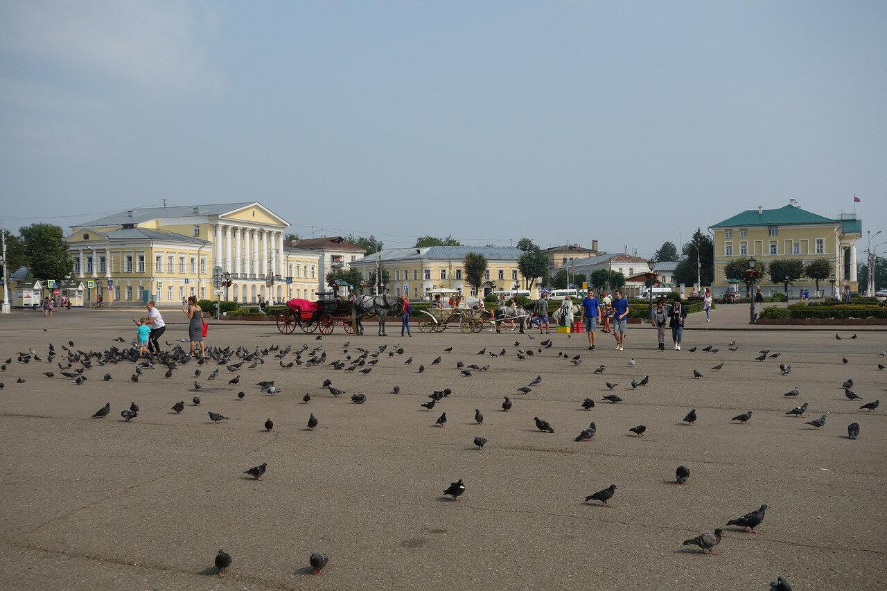 Сусанинская площадь, голуби