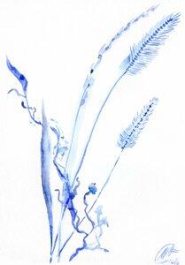 зимние-травинки-2.jpg