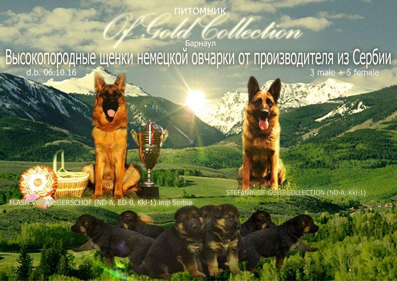https://img-fotki.yandex.ru/get/168237/134559744.3f/0_15322d_be854e8b_XL.jpg
