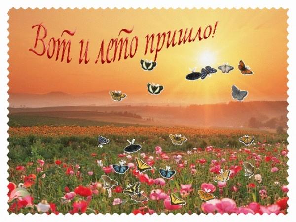 Вот и лето пришло! Птицы над полем открытки фото рисунки картинки поздравления