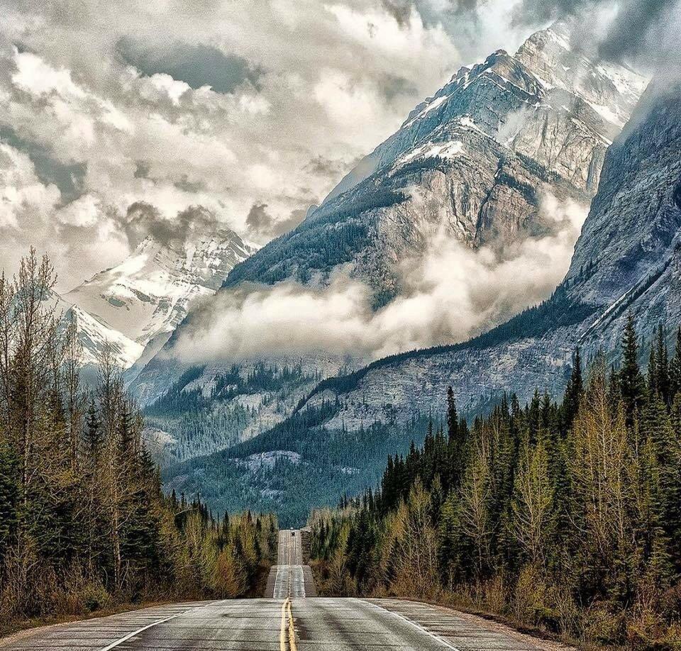 Бесконечная дорога