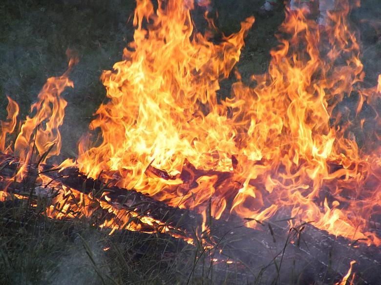ВГатчинском районе при пожаре  погибли два человека
