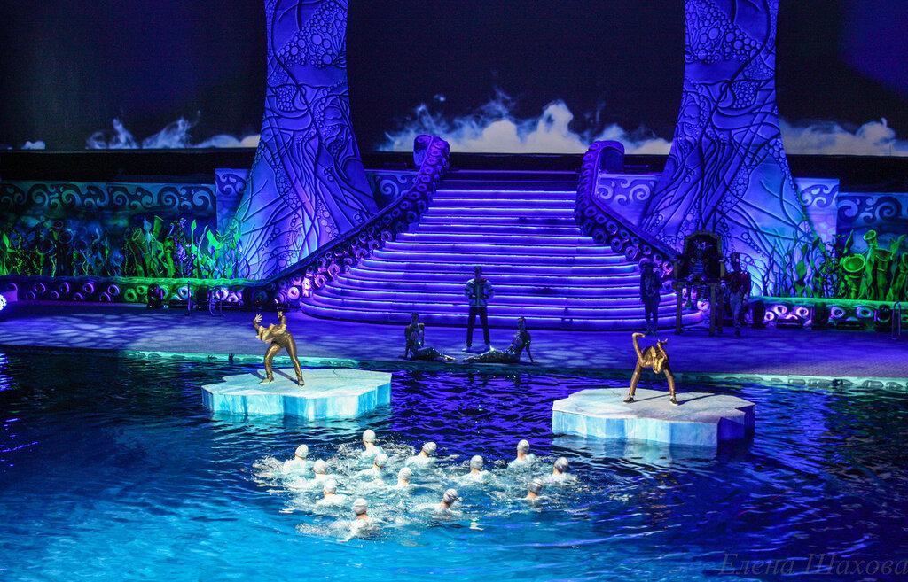 Олимпийский - бассейн-11.jpg