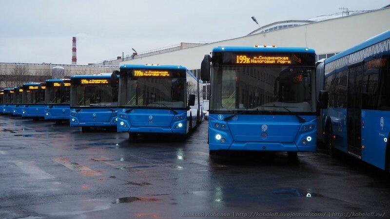 Пожизненная гарантия на городские автобусы