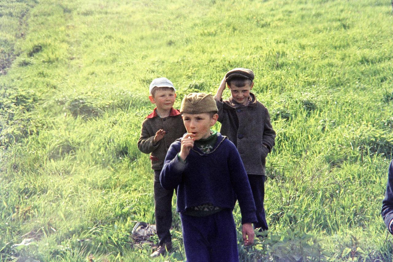 Окрестности Новгорода. Дети на лугу
