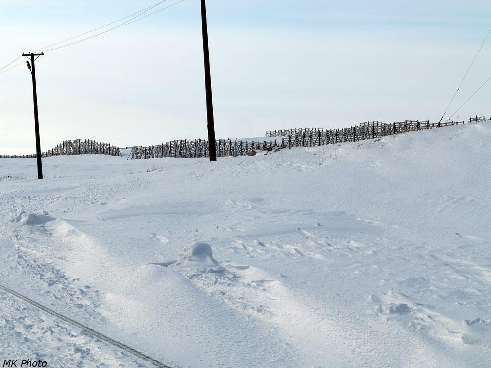 Заборы от снежных заносов