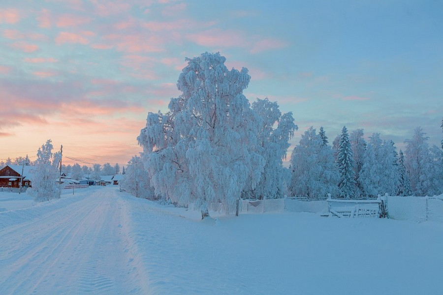 Подборка интересных и веселых картинок 02.12.16