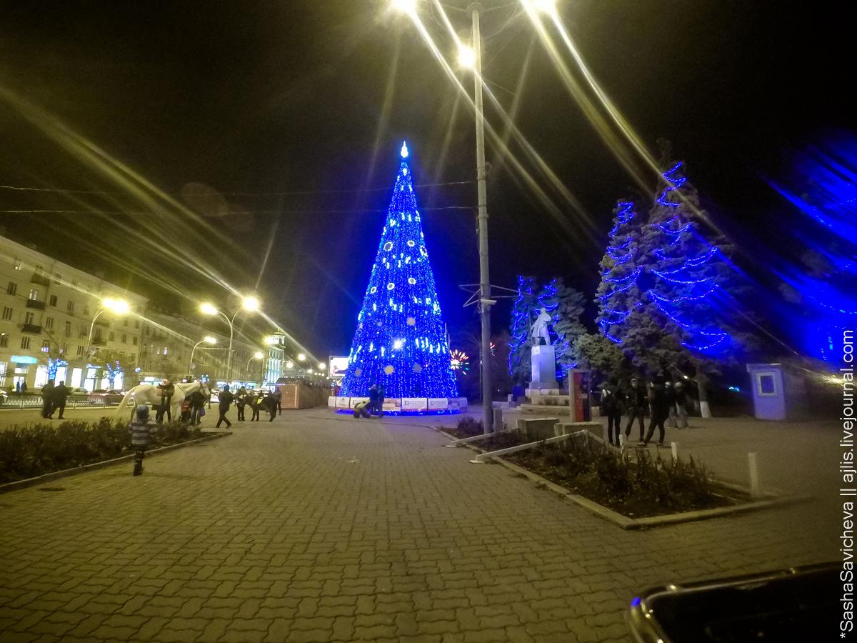 Елка у входа в парк Горького. 1 декабря 2016 года. Фото: Саша Савичева