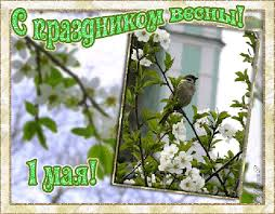 С праздником Весны 1 мая! Птица на цветущей ветке