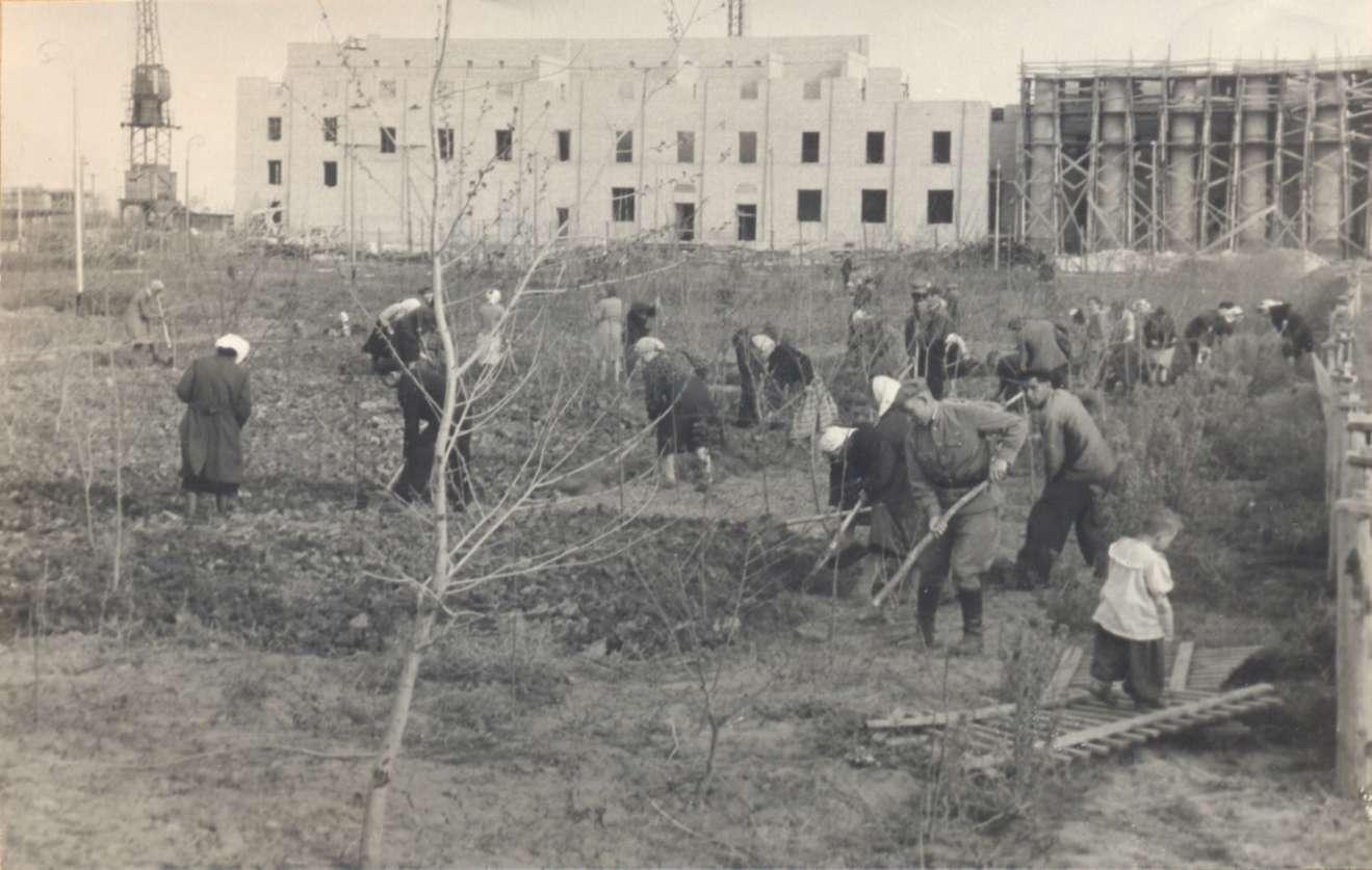 Субботник в парке ВГС - 1954-й год, Волжский.