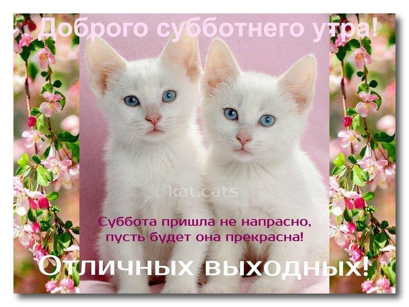 https://img-fotki.yandex.ru/get/169451/27156178.28c/0_1af2ab_493448ae_XL.jpg