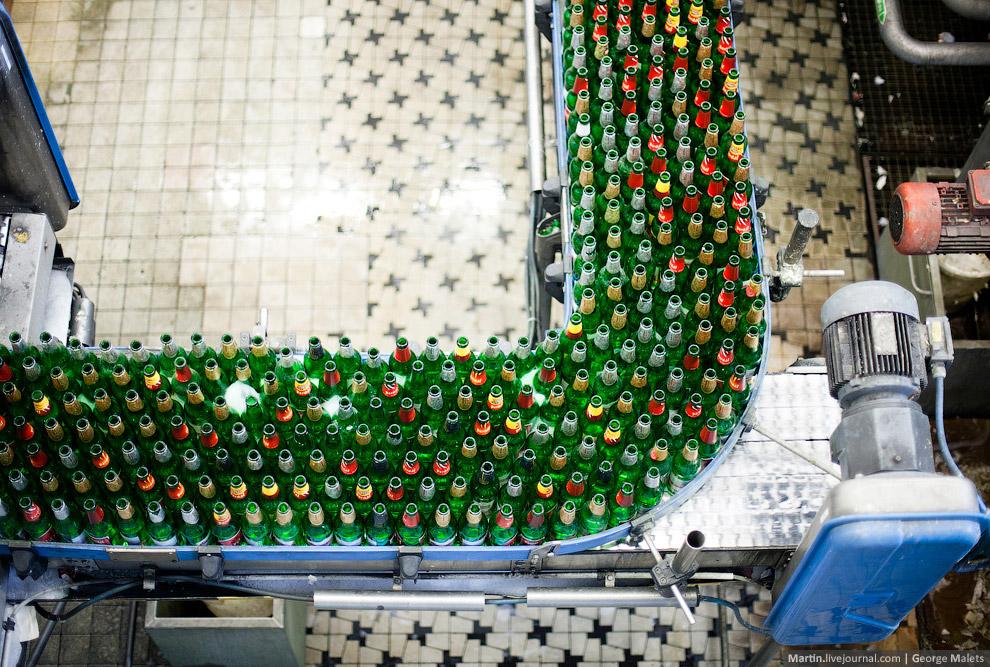22. Пиво Pardal придумывали и создавали буквальной всей Чехией! Но об этом в следующий раз.