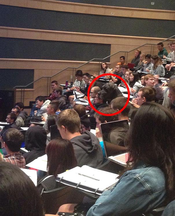Необычный студент.
