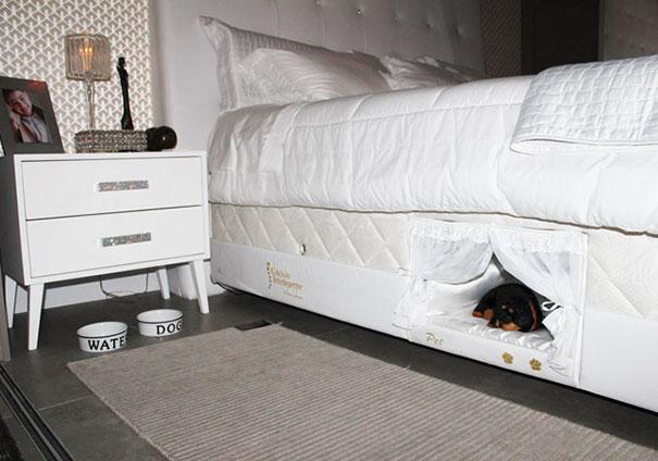 8. Отличный способ сделать для животных лежак, используя только подушку и свитер!