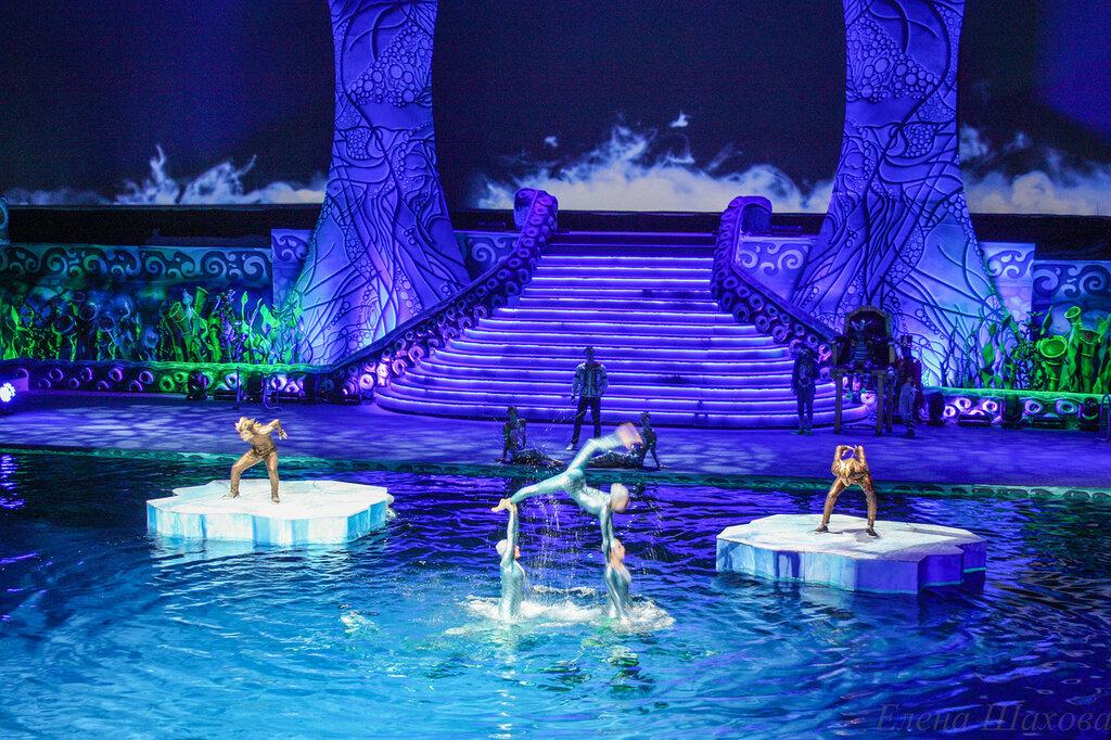 Олимпийский - бассейн-10.jpg