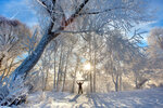 Пришла настоящая зима!