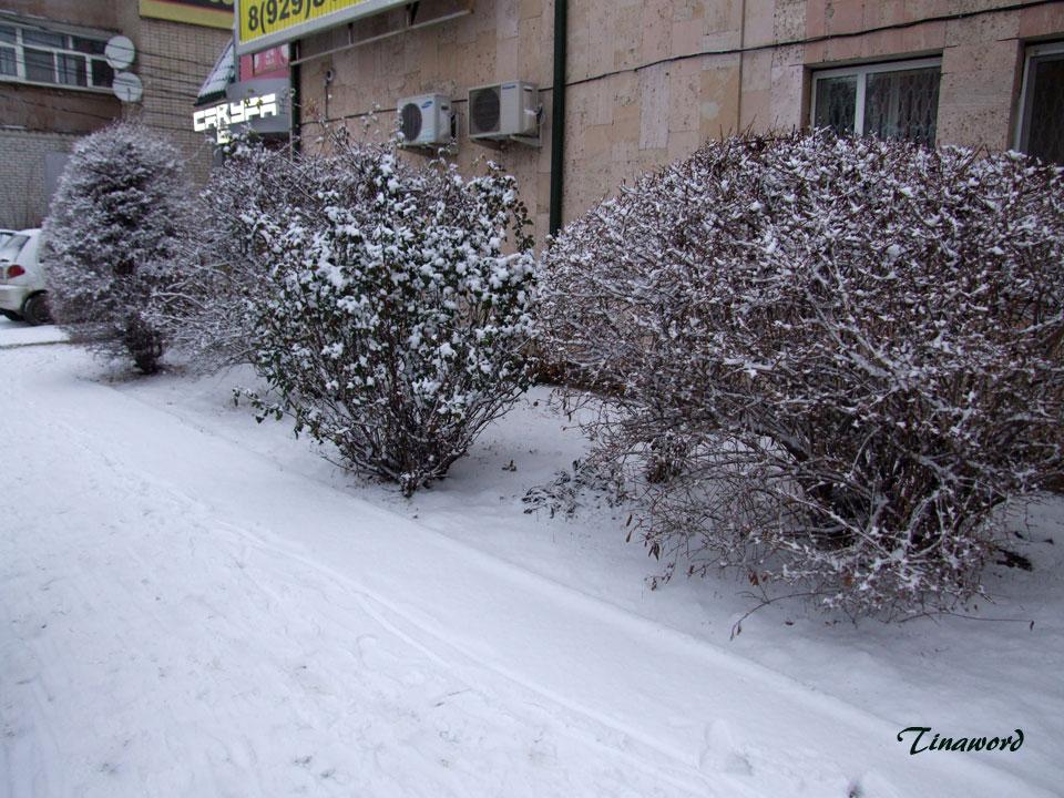 Вот-и-снег-0.jpg