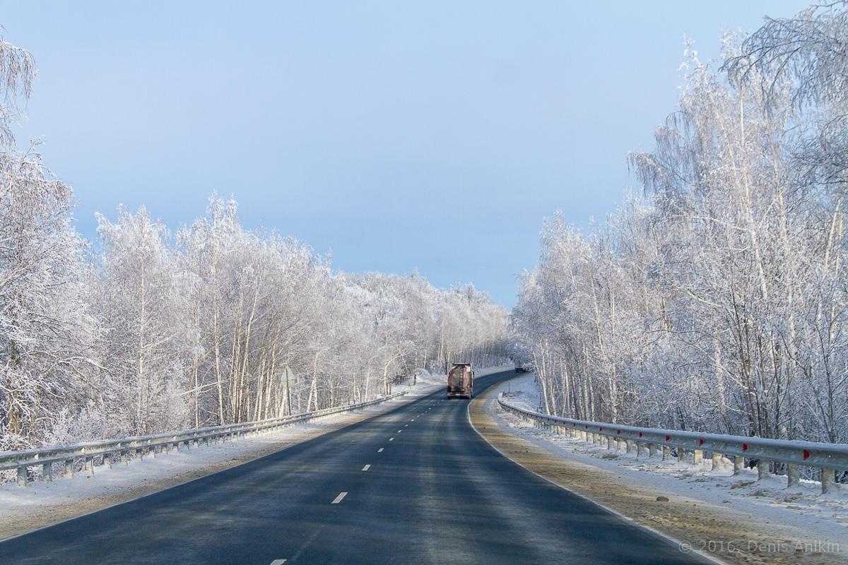 дорога национальный парк хвалынский фото 1
