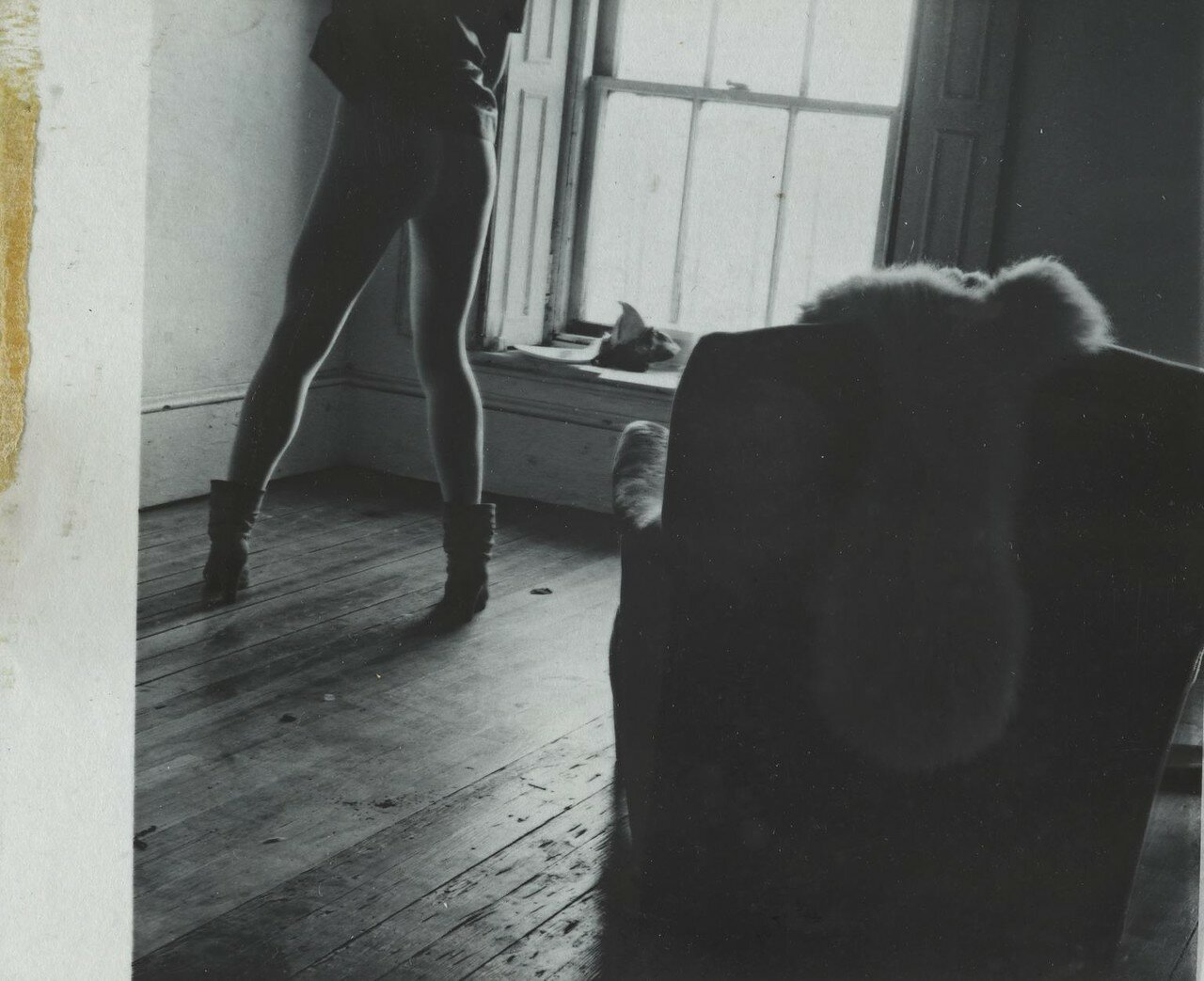 1975 - 1980. Без названия.