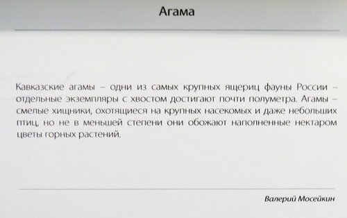 https://img-fotki.yandex.ru/get/169608/140132613.531/0_214882_c441a59d_L.jpg