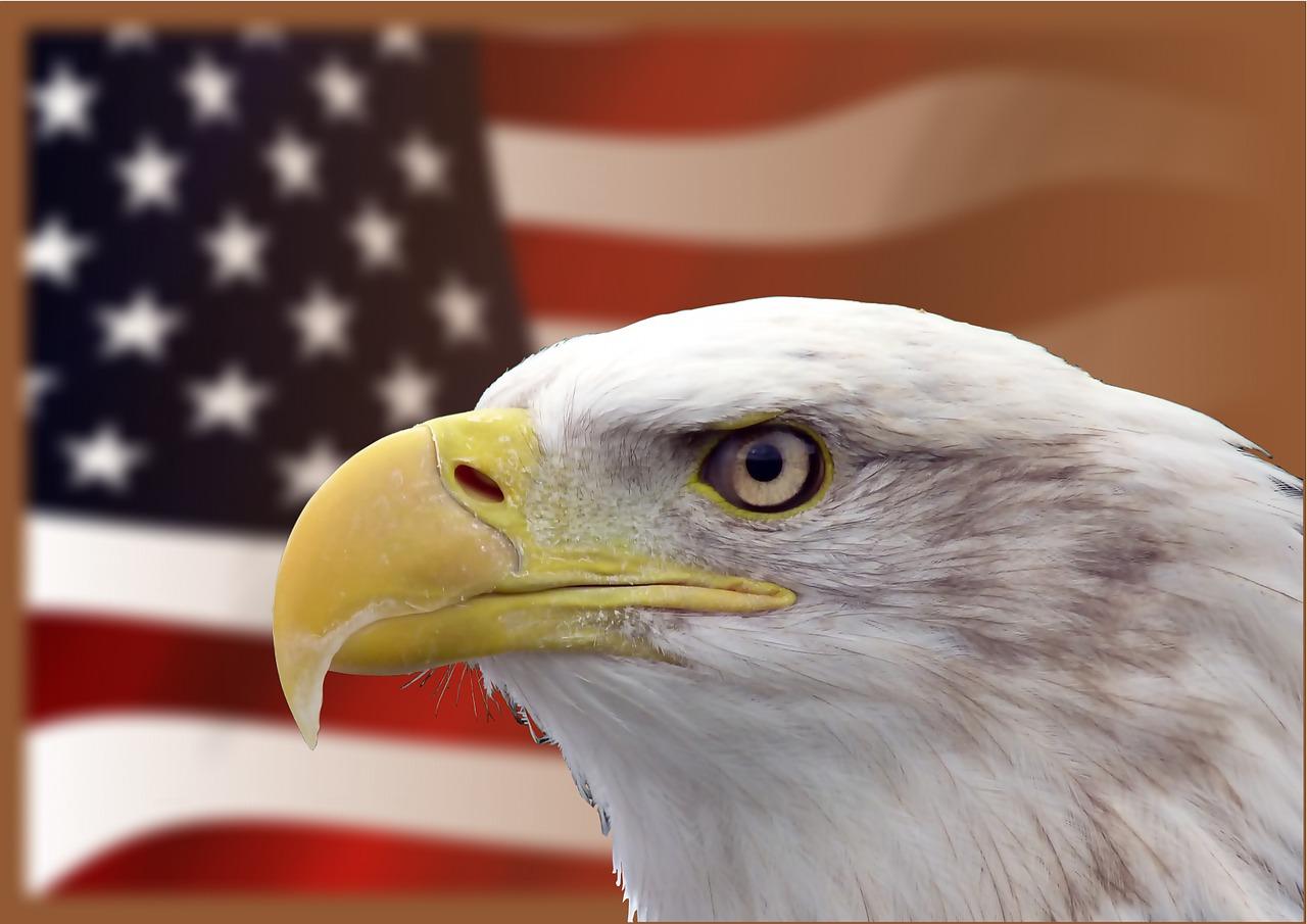 Символы США [(cc) PeterKraayvanger]