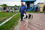 Выставка собак 2017 в Днепропетровске (6).JPG