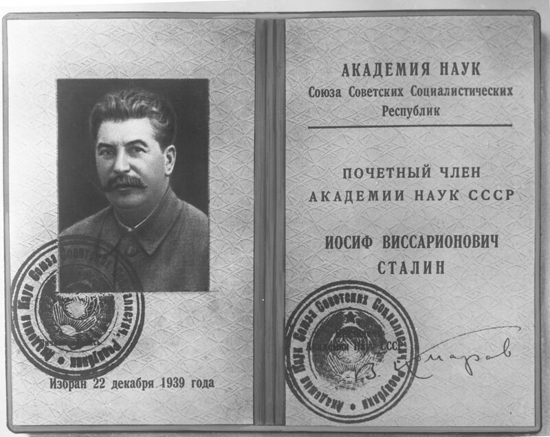 Сталин_академик.jpg